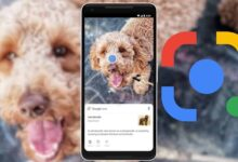 Google Lens Beta Update Adds Built-in Gallery to Quickly Pull Up Screenshots