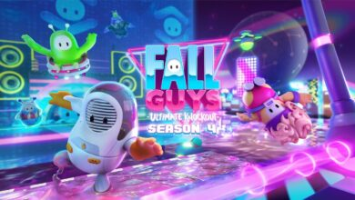 Fall Guys studio Mediatonic accidentally releases game Source Code