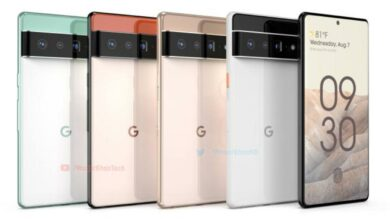 This time, Google has leaked the name of the upcoming Pixel 6 phone