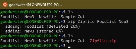 Ubuntu terminal commands and shortcuts zip