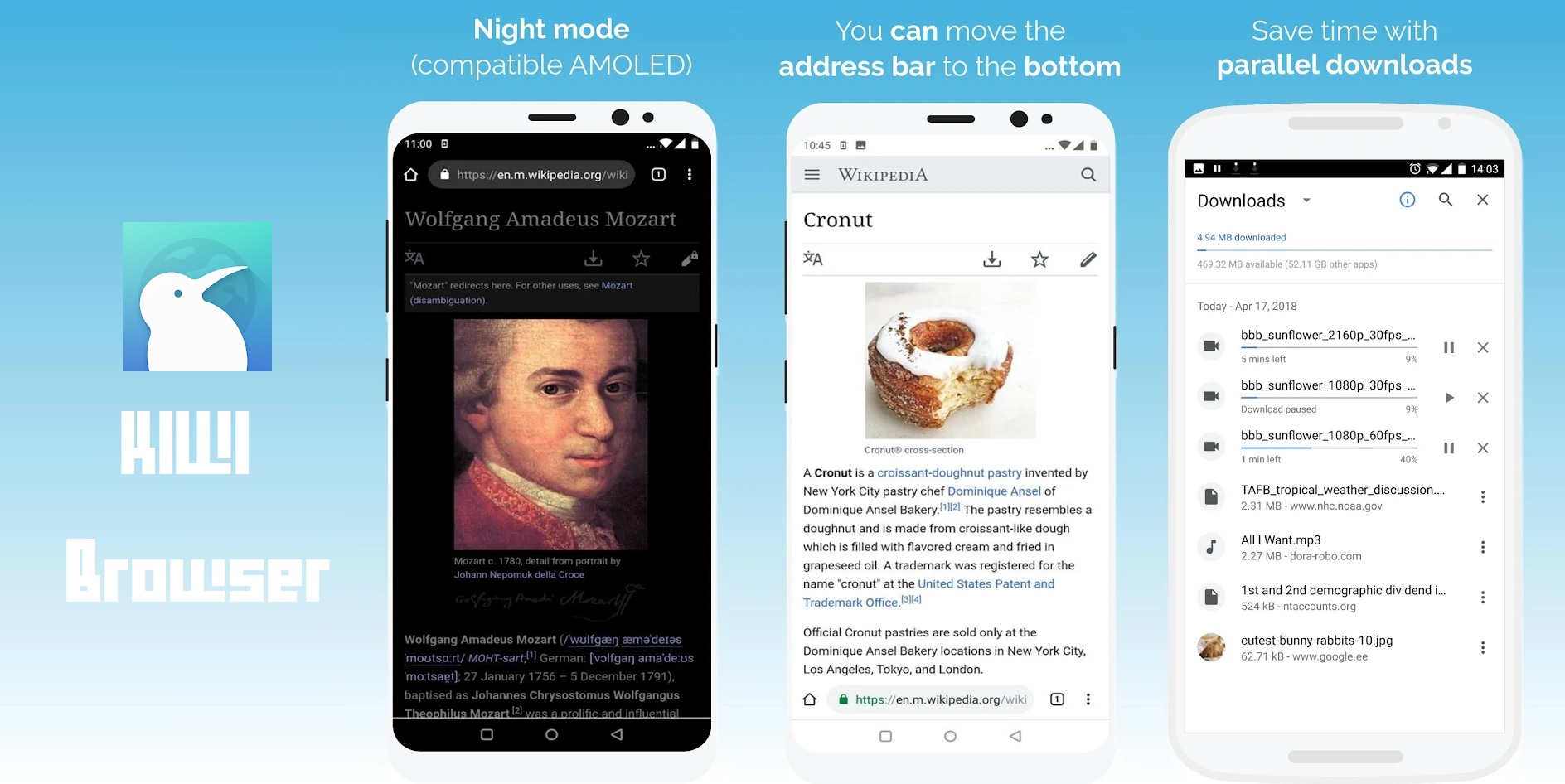 Best Browsers for Android with Flash Player - Kiwi