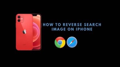 reverse search image on Apple iPhone